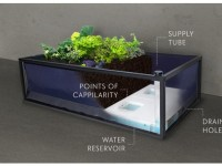Noocity Growbed lets You Grow Vegetable, Fruits Easily