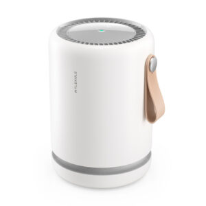 Molekule Air Mini + air purifier