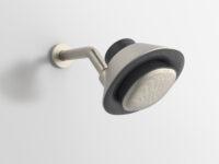 We want the KOHLER Moxie showerhead + wireless speaker